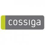 Cossiga-copy